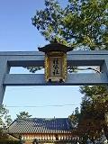 Tanekashi