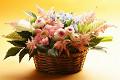 Flower_gift_1