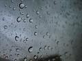 Rain_drops_1