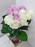 Flower_20200315001601