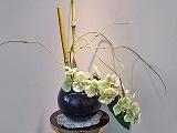 Flower_20201015220701
