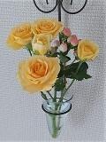 Flower_20210629123901