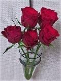 Rose_20211001025001