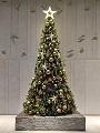 Tree_20191108220701